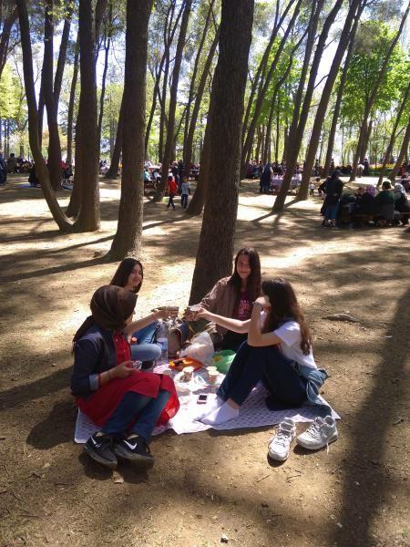 Emirgan Korusunda öğrencilerimizle piknik yapılmıştır.